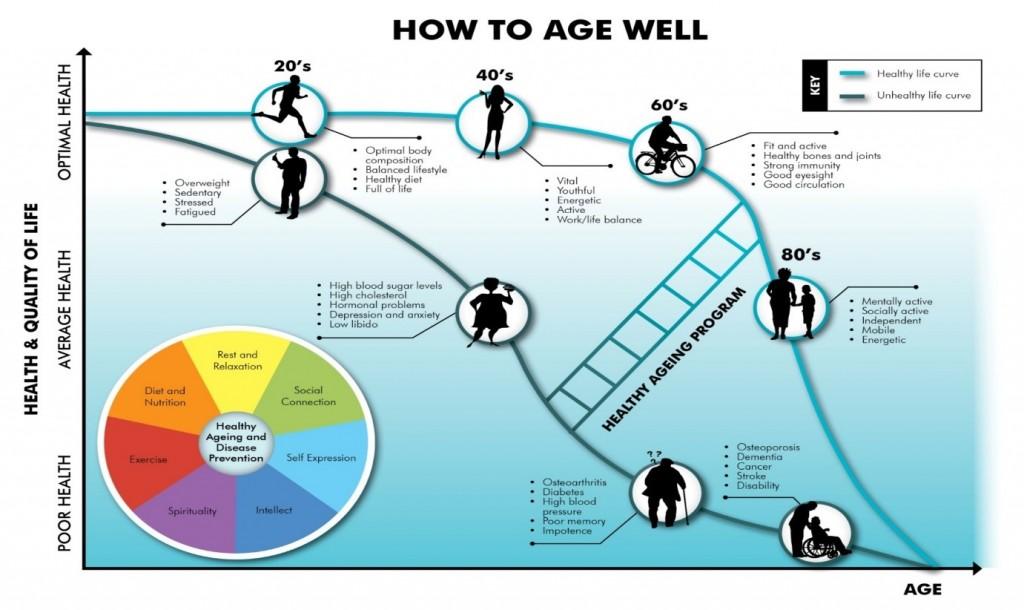 Ageing Diagram