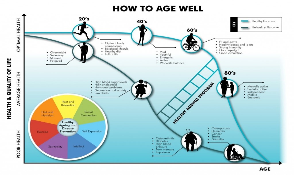 Ageing Diagram